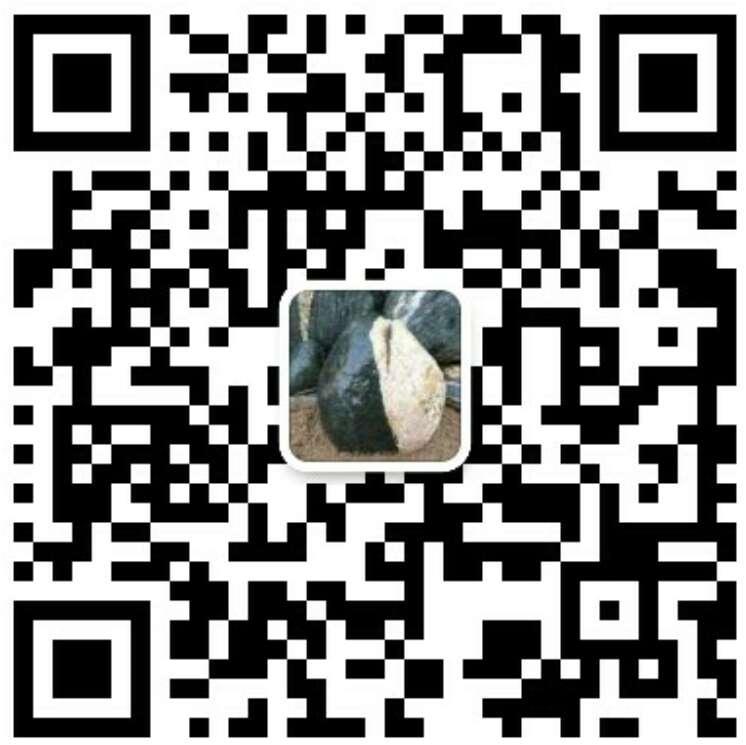 龙8国际娱乐手机版